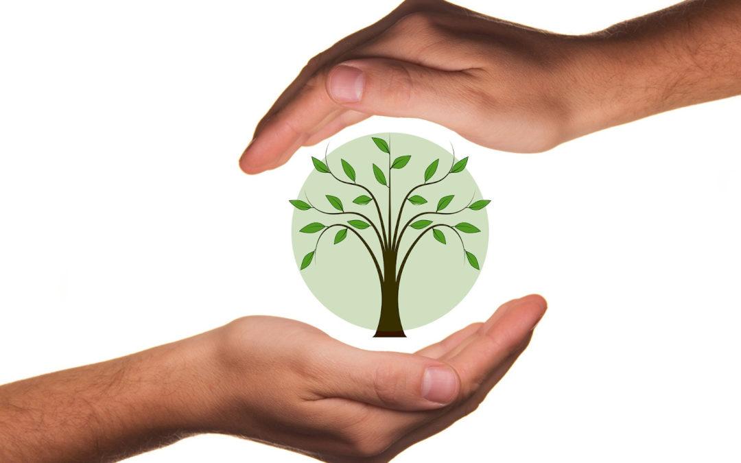 Eco-chèques – quels sont les secteurs concernés pour ce mois de juin ?